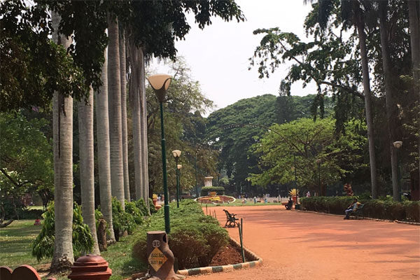 Best 6 Attractions at the Lal Bagh Botanical Gardens, Bangalore