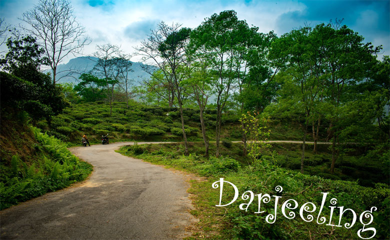 Holiday in Darjeeling
